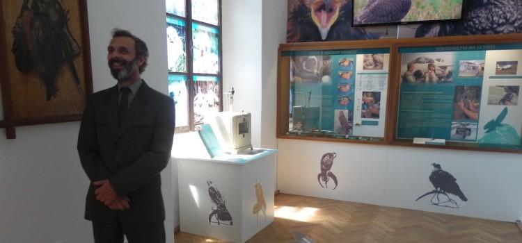 Muzeum sokolnictví Ohrada